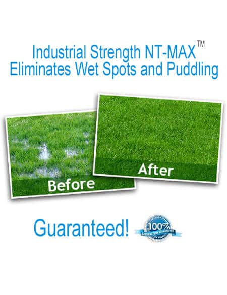nt max super shock septic restoration treatment kit rootx