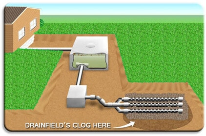 Picture of areas where drainfields clog